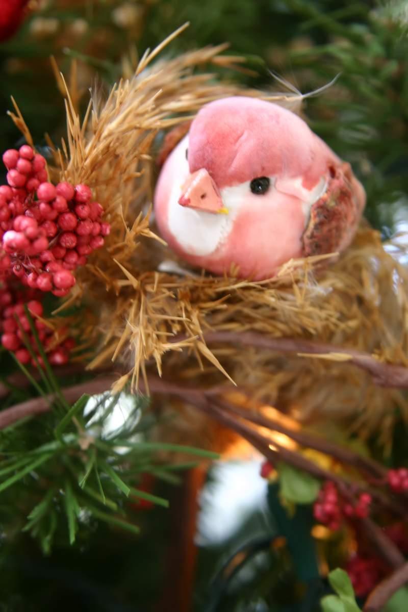 Blog_trimmer_pink_bird