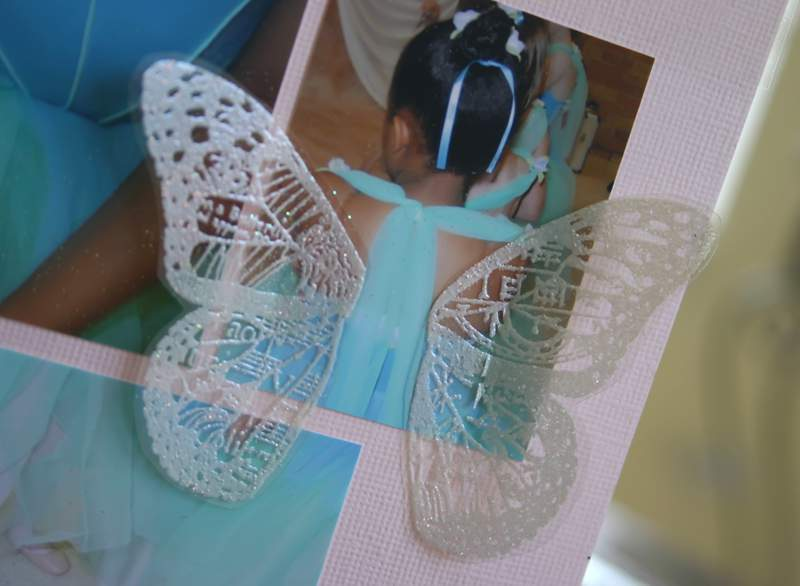 Blog_butterfly_wings2