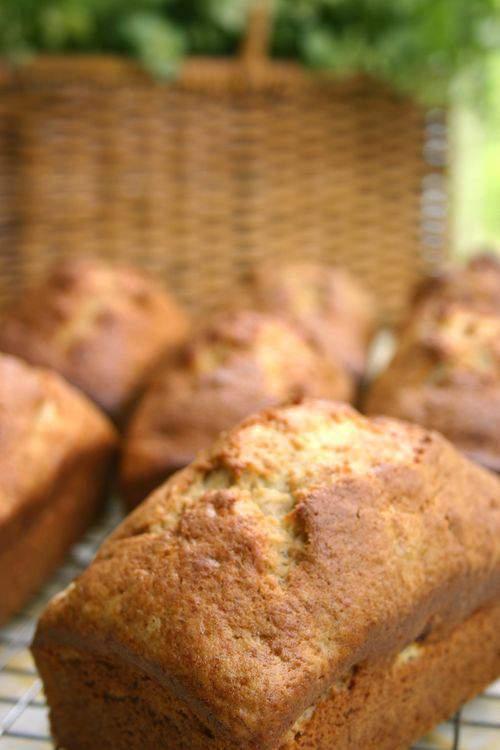 Blog monkey loaf6