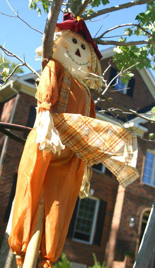 Blog fall fun scarecrow2