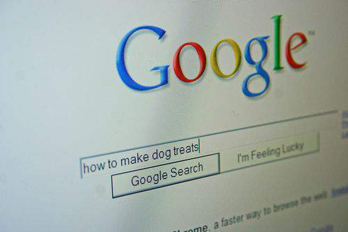 Blog dog treats google