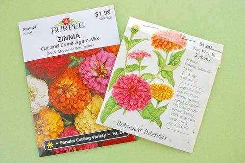Blog flower pillow seeds3