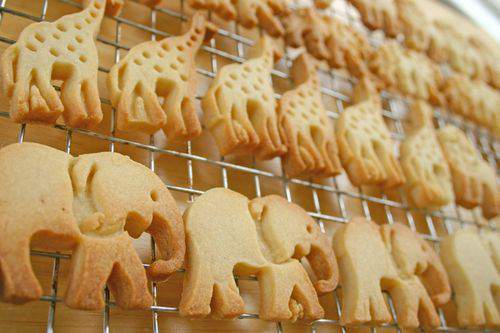 Blog animal crackers group2