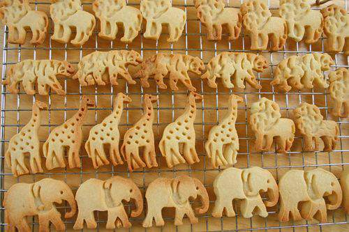 Blog animal crackers group