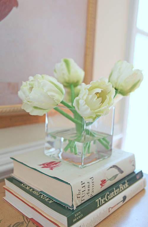 Blog tulip close