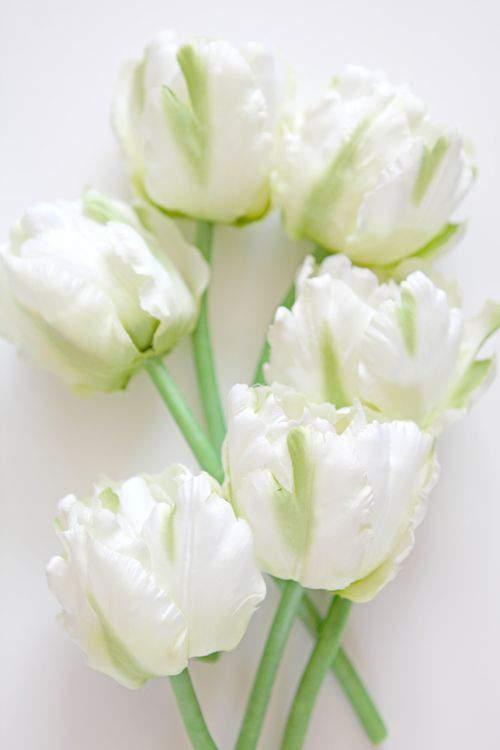 Blog acrylic flowers 5