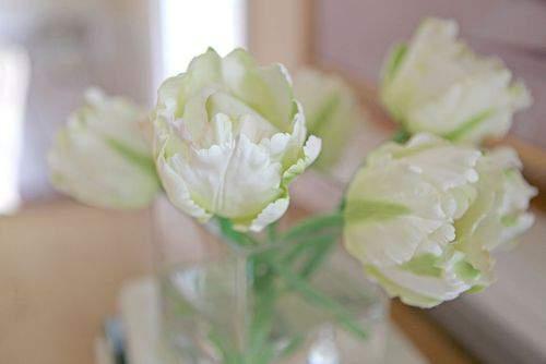 Blog acrylic flowers