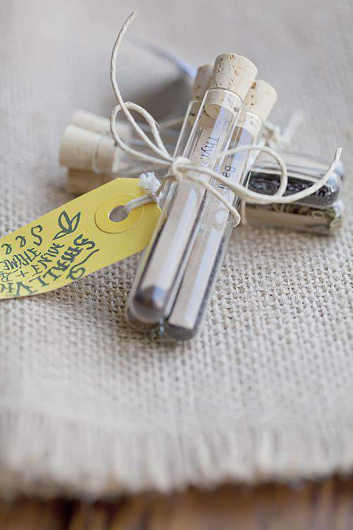 Seed tubes