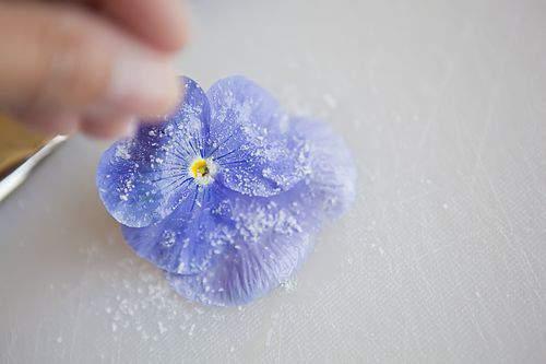 lavender sugar sprinkle