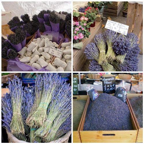 dry lavender market