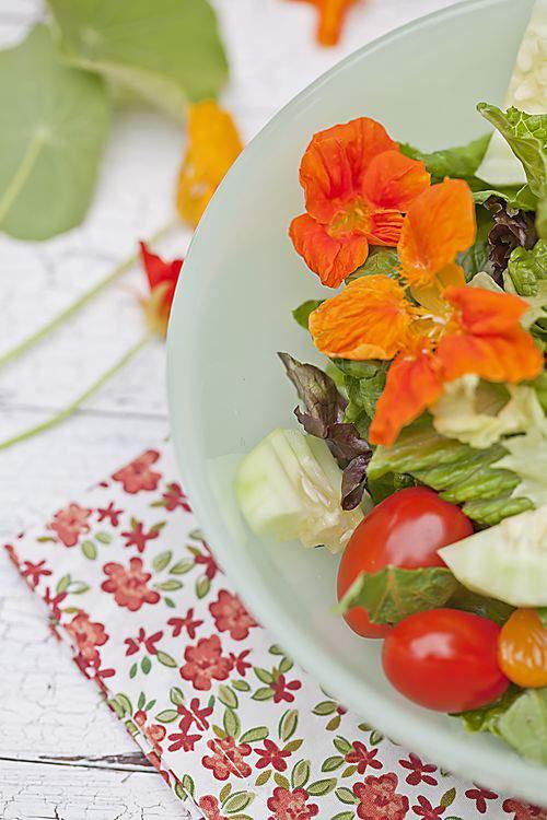 salad-nasturtium