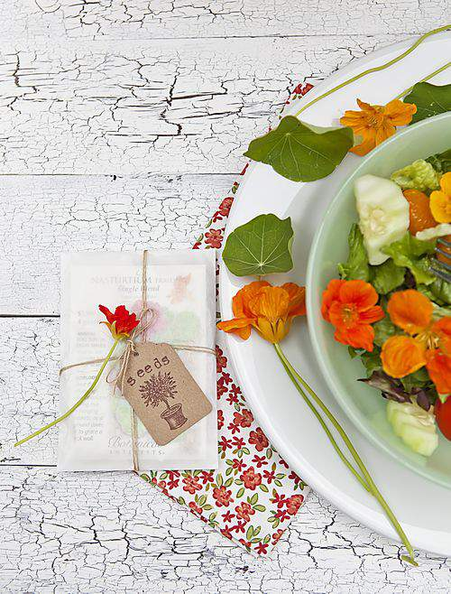 nasturtium gift pack and bowl