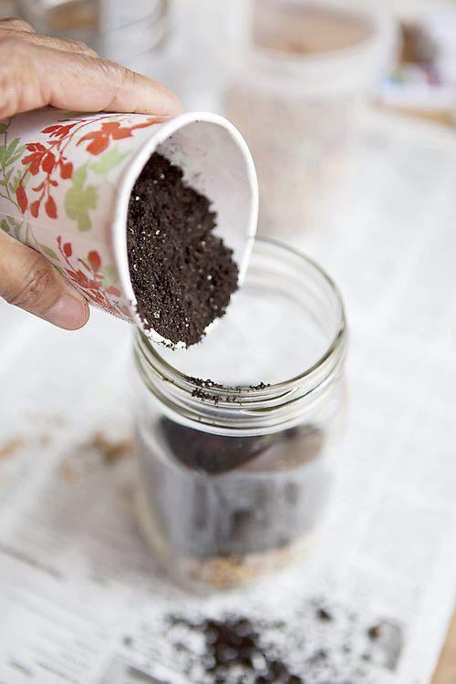 mason jars with soil