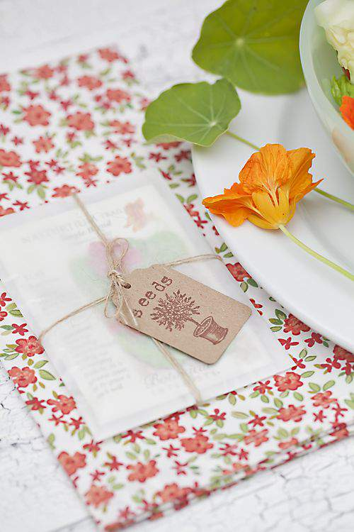 nasturtium seed gift pack