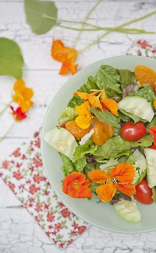 Nasturtium Salad