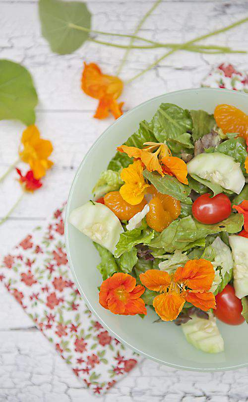 THE FRIDAY FOODIE  Nasturtium Salad