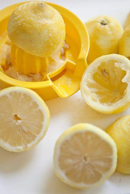 Blog lemon sorbet lemons