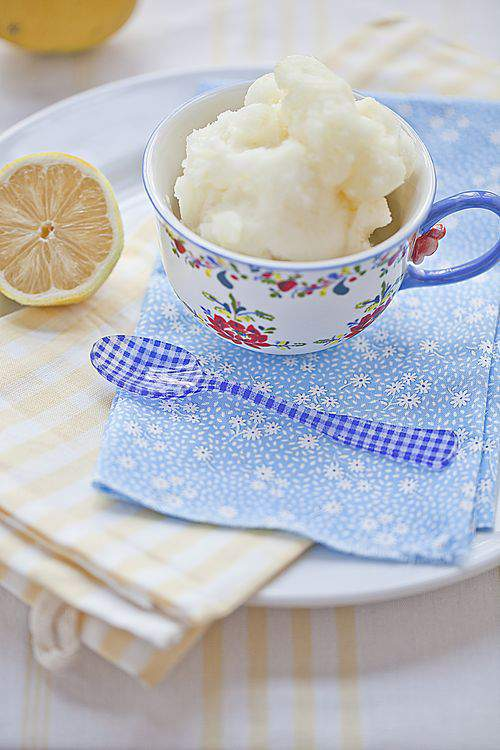 Blog lemon sorbet wide4