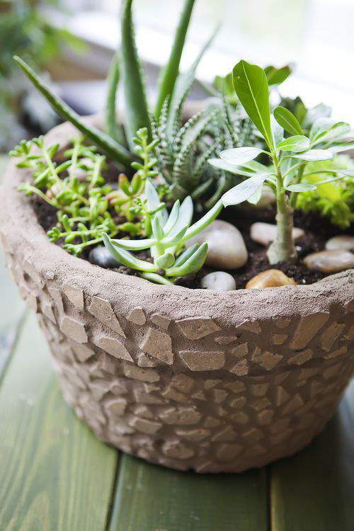 mosaic tile succulent pot