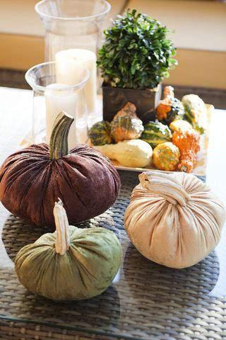 soft pumpkins