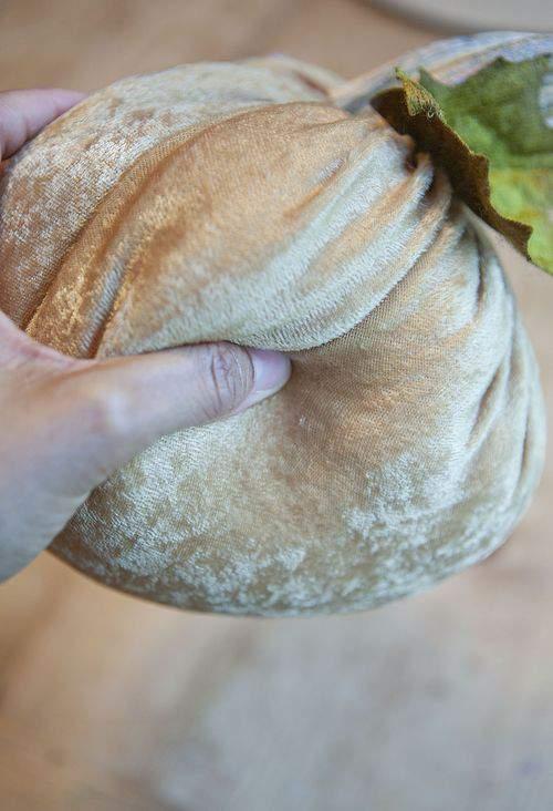 soft pumpkin squeeze