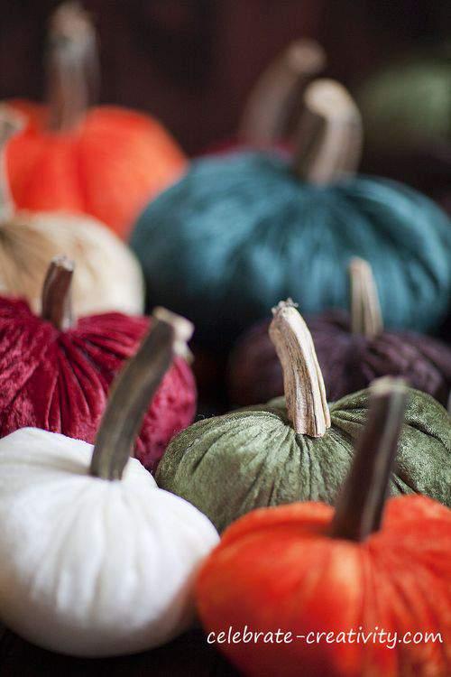 Blog velvet pumpkin garden watermark