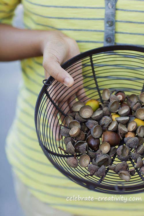 Blog velvet acorns watermark2