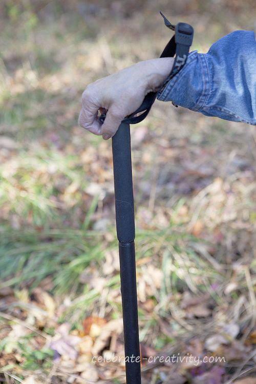 Blog walnuts cane2