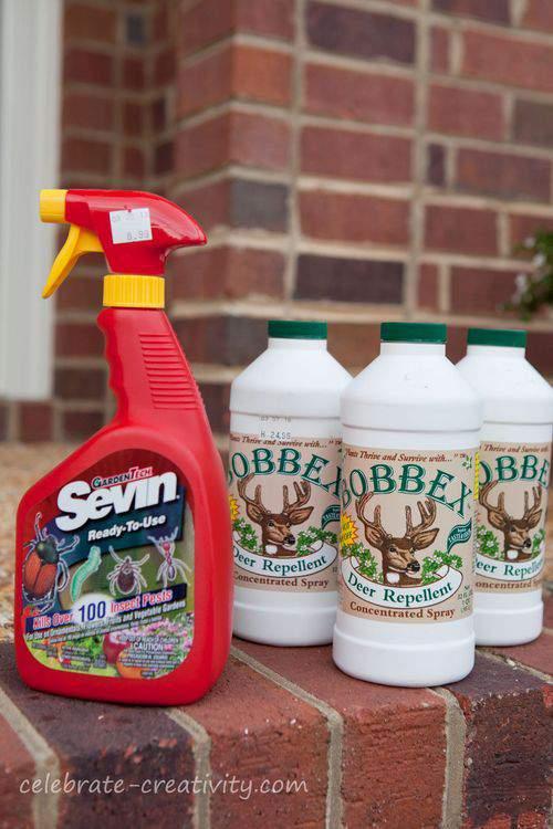 bug and deer spray