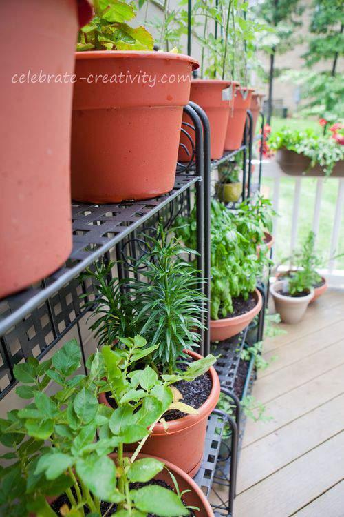 gardening racks