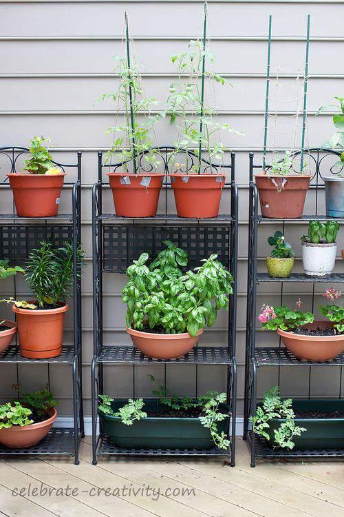 more gardening racks