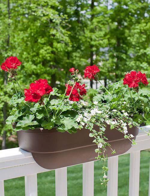 QUICK FIX Deck Rail Flower Boxes