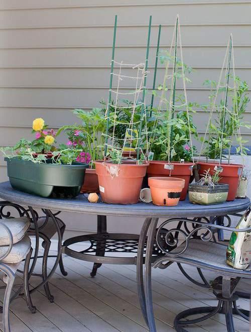 All (Gardening) Hands on Deck
