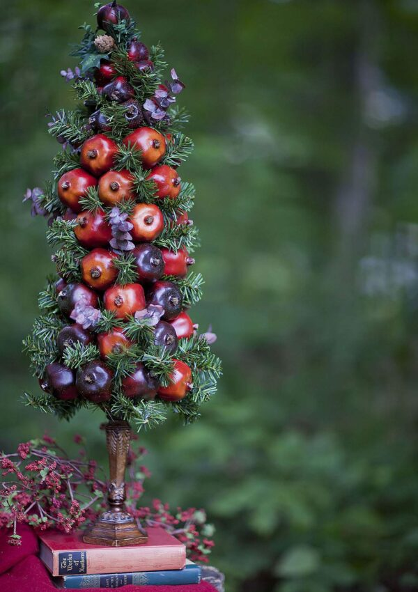 Pomegranate Topiary COUNTDOWN TO CHRISTMAS HOLIDAY SERIESDay 1