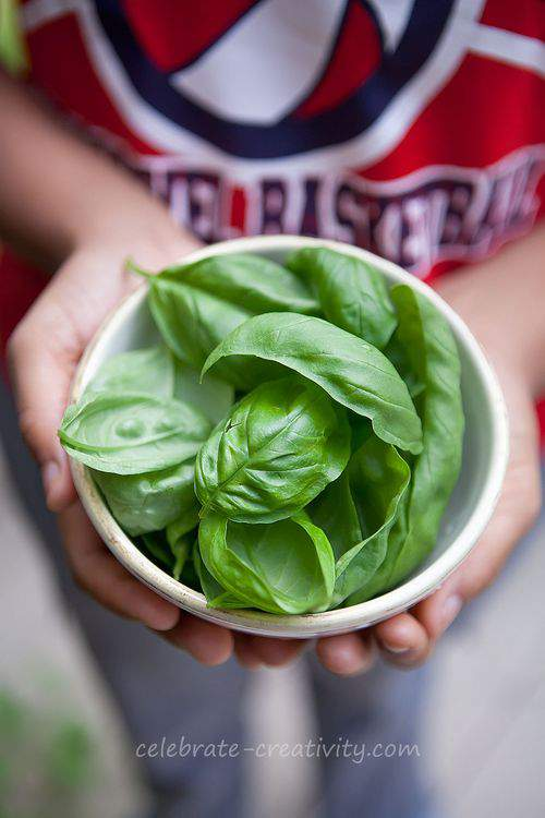 Blog-pizza-basil-bowl