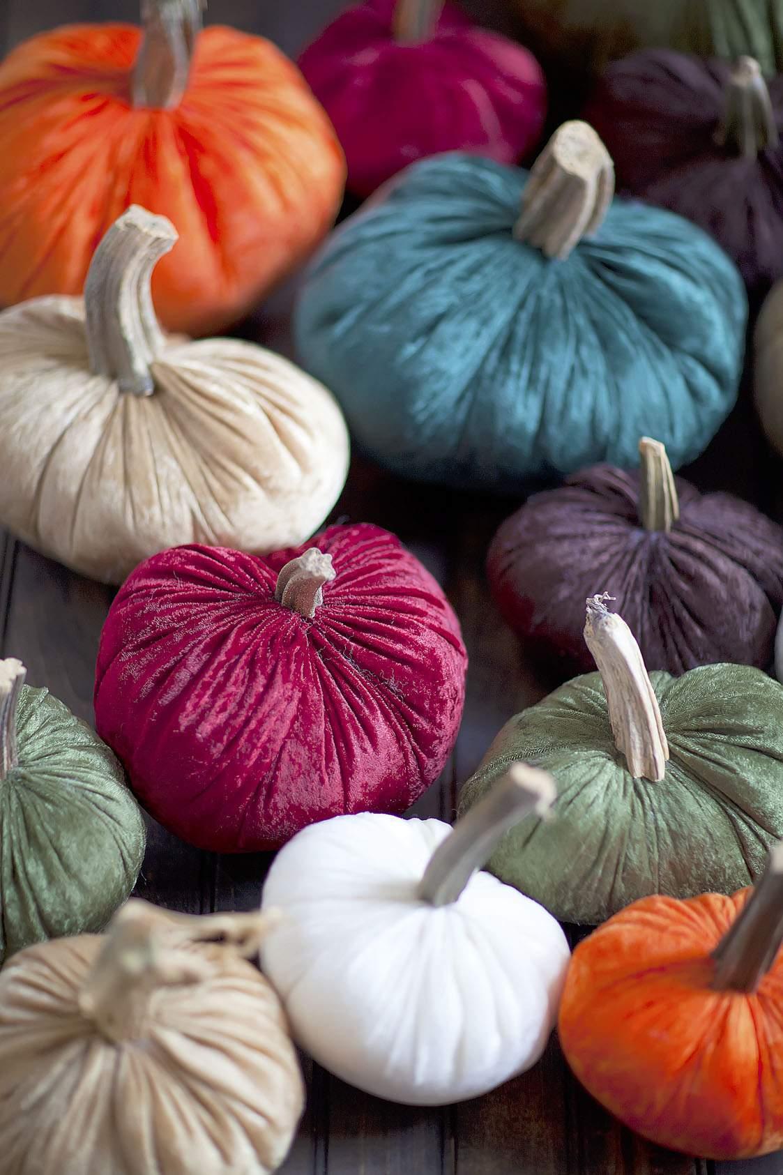 Pumpkin stems for crafts - Pumpkin Stems Steps