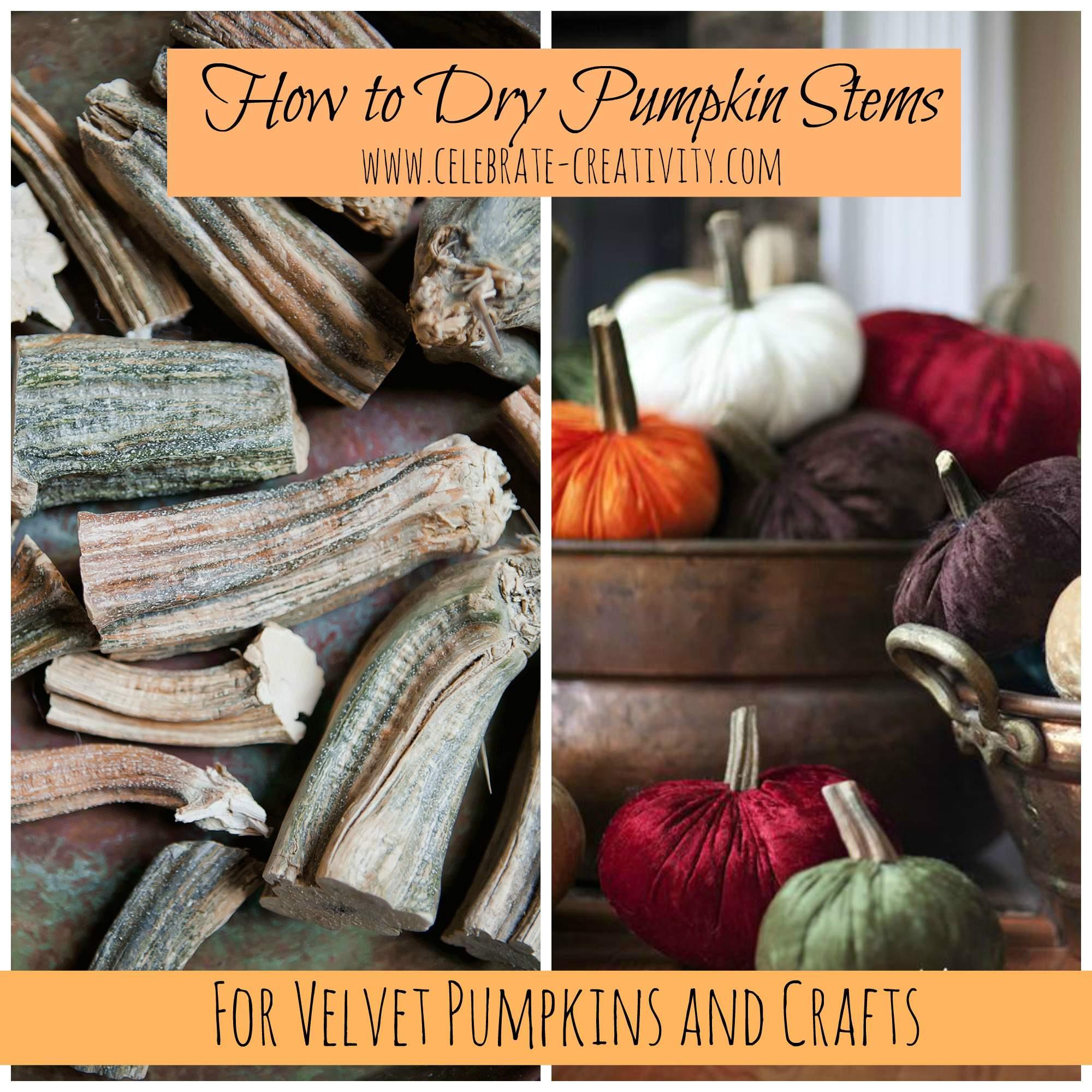 Pumpkin stems for crafts - Pumpkin Stems Bowl