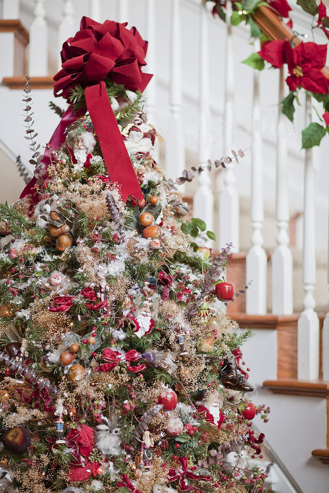 christmas tree and favorite holiday celebration The christian holiday has some european origins -- like the christmas tree and candy canes -- but santa claus came from an american poet learn more about the meaning of christmas get ready for the holiday with pretty decorations -- garlands, swags, and centerpieces, plus outdoor decorating ideas that start with christmas wreaths and sparkling.