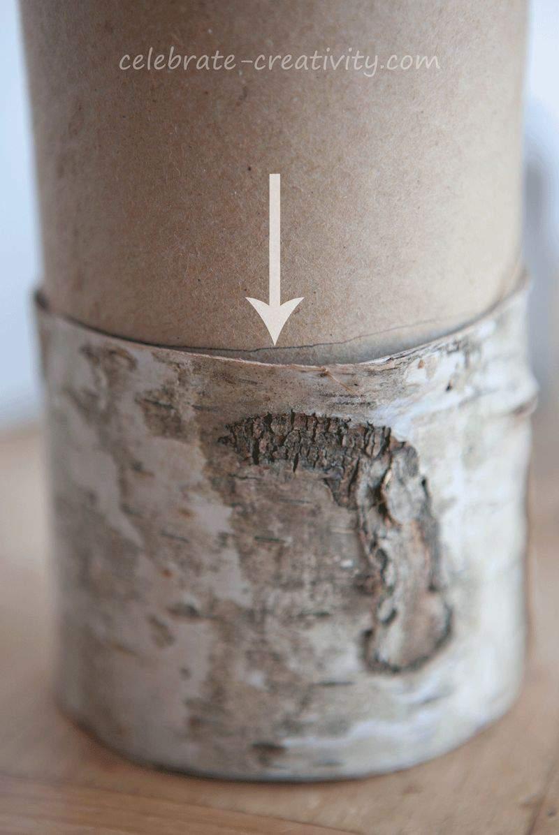 White-birch-pencil-line2