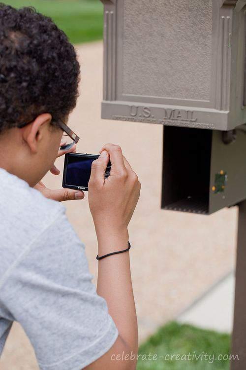 Bird mailbox