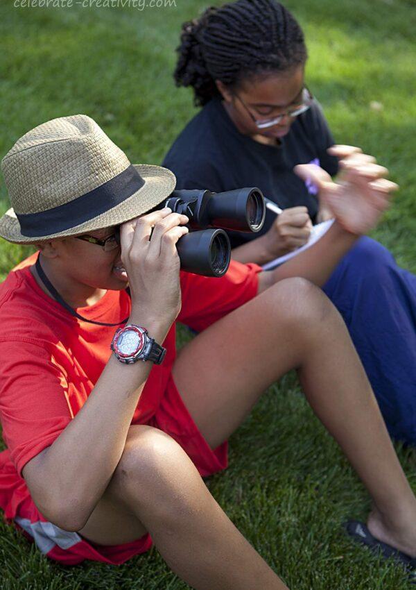 Birdwatching & Birdtalking