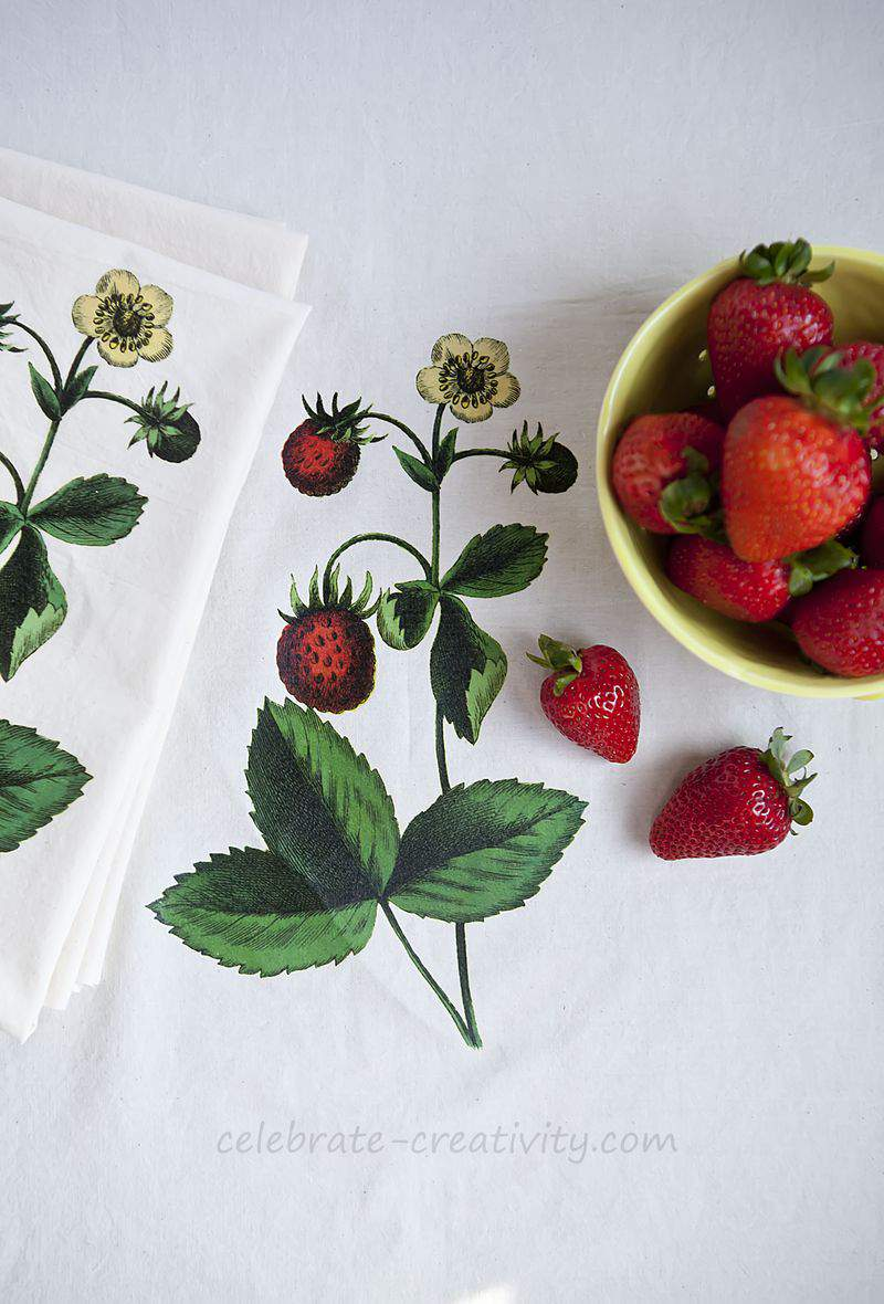 Strawberry dish towel set4