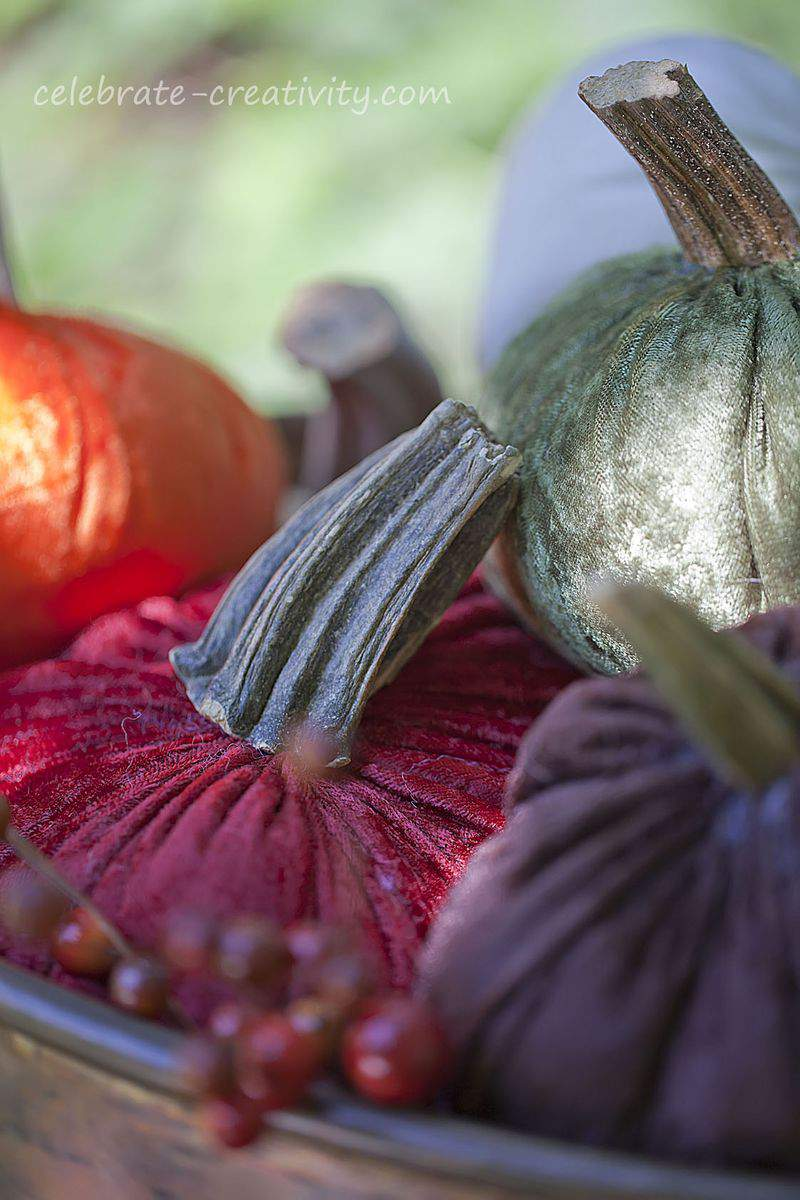 Velvet pumpkins20
