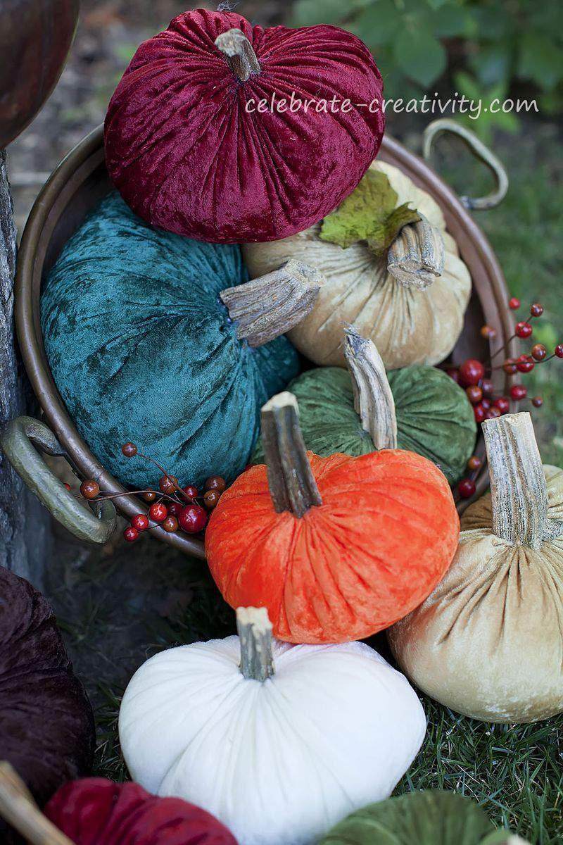 Velvet pumpkins14