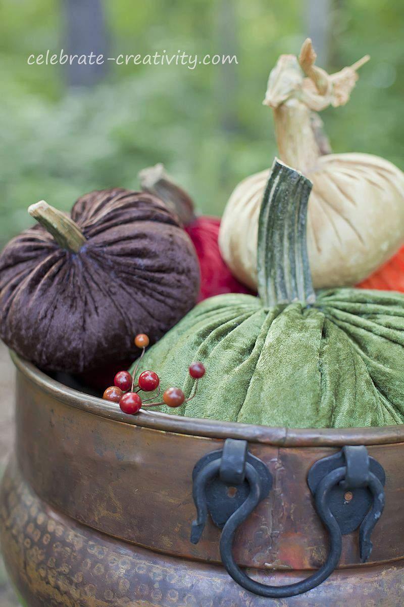 Velvet pumpkins13