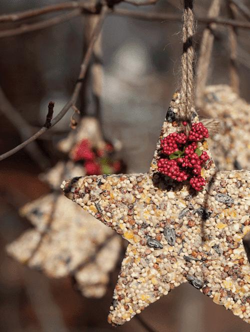 Celebrate creativity birdseed ornaments solutioingenieria Image collections