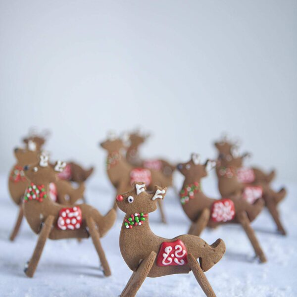 3-D Reindeer Cookies <br>COUNTDOWN TO CHRISTMAS HOLIDAY SERIES <BR> Day 22