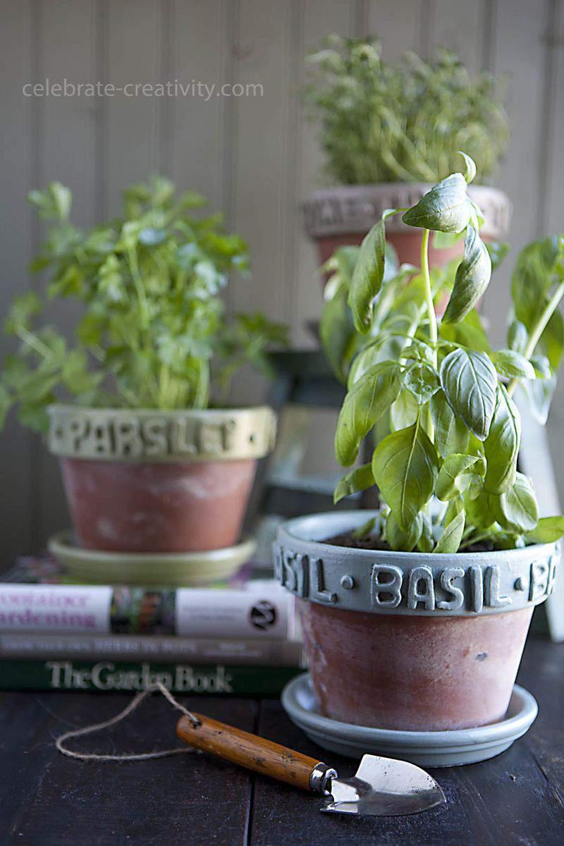Ec herb pots21