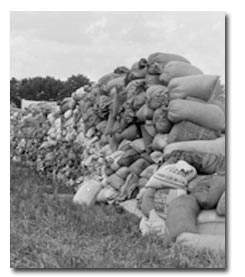 The Beauty of Grain Sacks