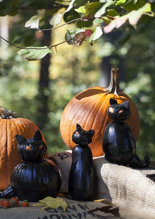 Pumpkin Carving  Black Cat Family